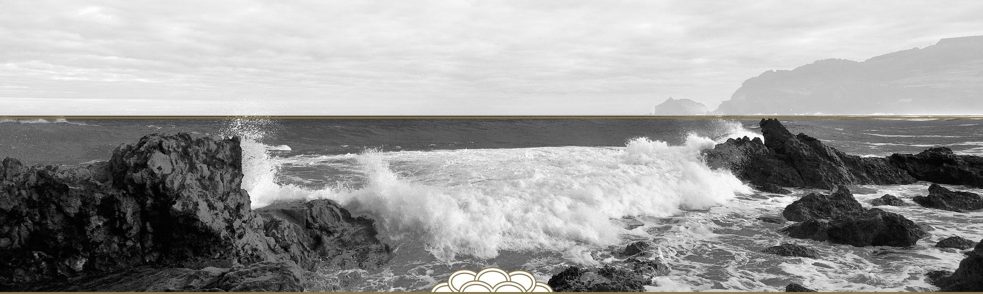 mar cantabrico orlando